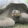 All-Inclusive Galapagos